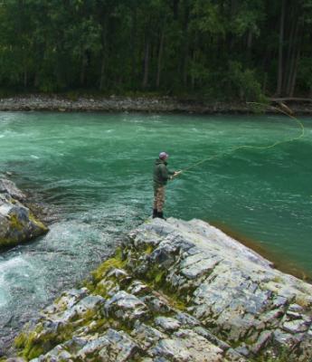 Рыбалка речная